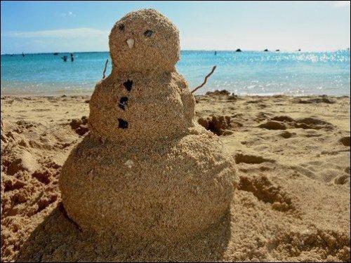 Пляжные будни в прикольных картинках (16 фото)