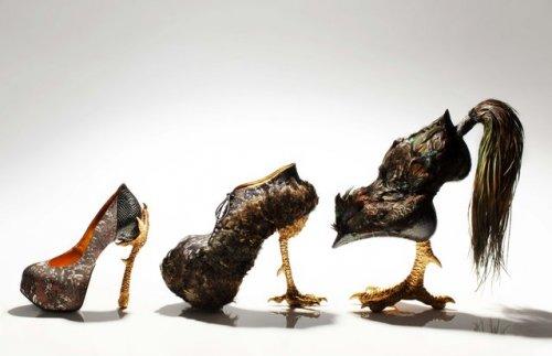 Дизайнерская обувь от Масаи Кусино (12 фото)