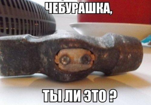 http://www.bugaga.ru/uploads/posts/2014-08/thumbs/1408698852_smeshnye-6.jpg