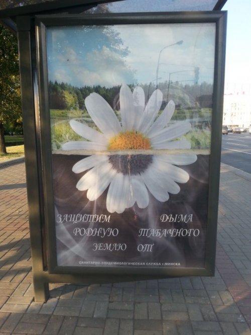 http://www.bugaga.ru/uploads/posts/2014-08/thumbs/1408717107_reklamnye-marazmy-11.jpg