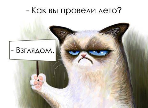 http://www.bugaga.ru/uploads/posts/2014-09/1409569360_kartinki-2.jpg