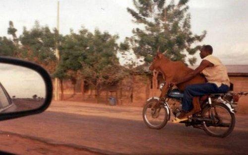 Сумасшедшие грузоперевозки по-африкански (19 фото)