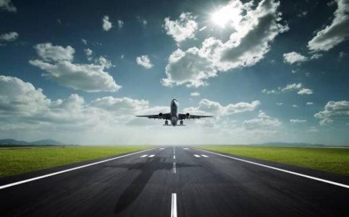 9 Самых странных причин для экстренной посадки