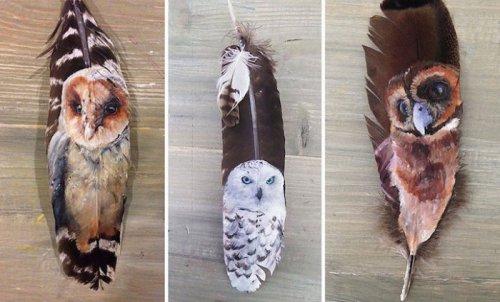 Удивительные рисунки на птичьих перьях (12 фото)