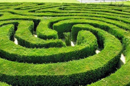 http://www.bugaga.ru/uploads/posts/2014-09/thumbs/1410163927_labirint-longleat-hedge-maze-4.jpg