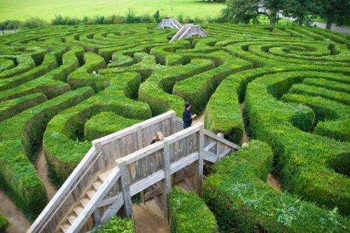 http://www.bugaga.ru/uploads/posts/2014-09/thumbs/1410163968_labirint-longleat-hedge-maze-1.jpg