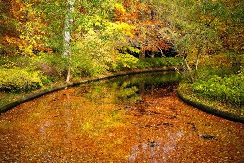 Краски осени (24 фото)