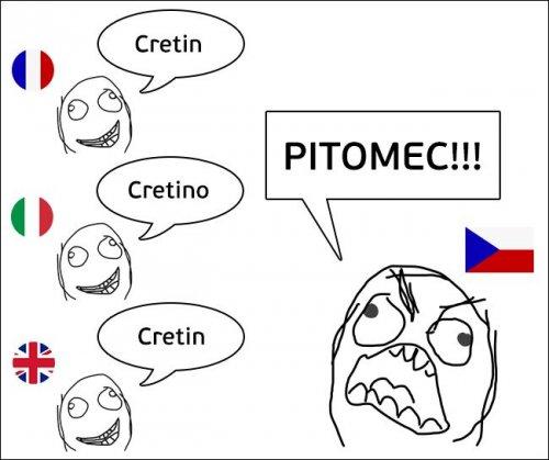 Что русскому кретин, то чеху питомец (10 фото)
