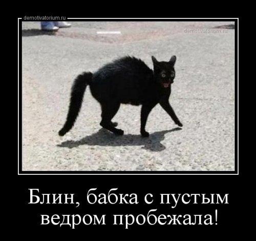 http://www.bugaga.ru/uploads/posts/2014-09/thumbs/1411539441_demki-7.jpg