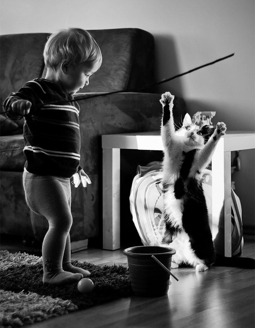 называлась прикольные картинки кошек с детьми ещё погуглил этом