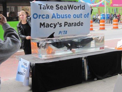 Топ-10 самых скандальных рекламных акций, организованных PETA