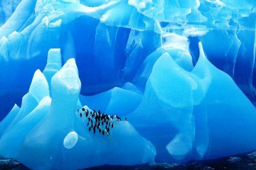 Топ-25 потрясающих ледников и айсбергов со всего мира