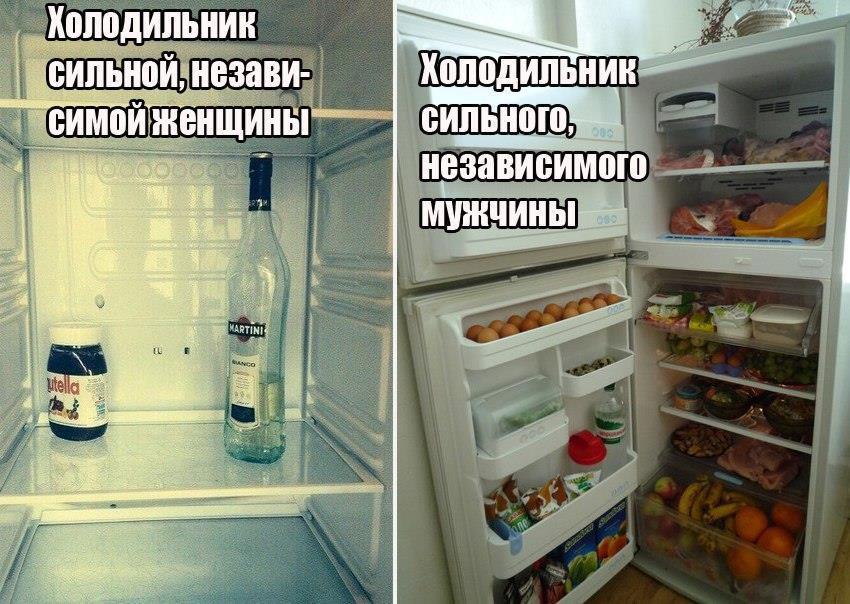 прикольные картинки про холодильник ощутимыми эти