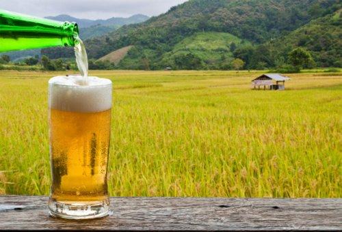 Топ-10 фактов о Бельгии, которые изменят ваше отношение к пиву