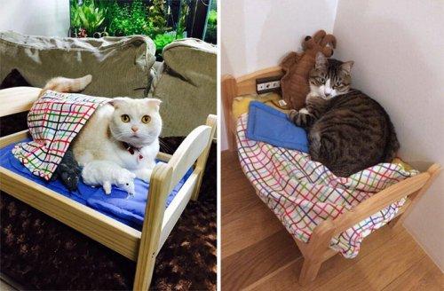 Японцы превращают кукольные кроватки от ИКЕА в спальные места для своих кошек (15 фото)