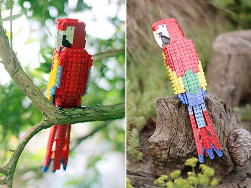 Птицы из LEGO, созданные Томом Полсэмом (20 фото)