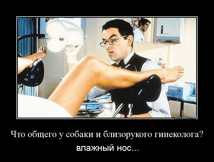 Открыткой, смешная картинка гинеколог