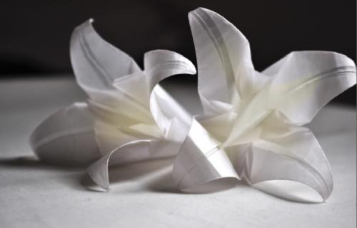 Шедевры бумажного искусства: оригами (16 фото)