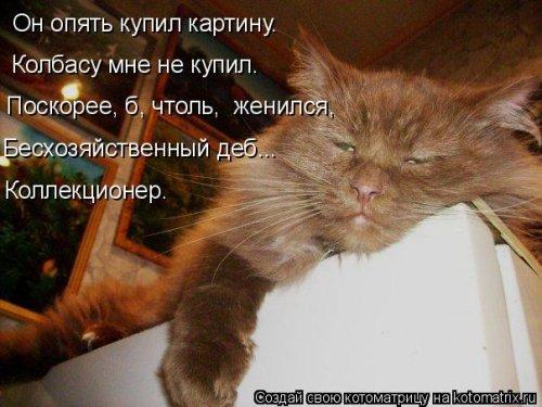 Лучшая котоматрица на Бугаге (29 шт)
