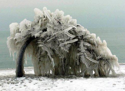 Топ-25: Удивительные пейзажи, созданные ледяными бурями