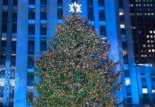 Топ-10: Необычные способы обеспечить энергией новогоднюю ёлку