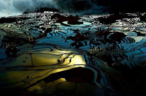Завораживающие фотографии рисовых террас (25 фото)