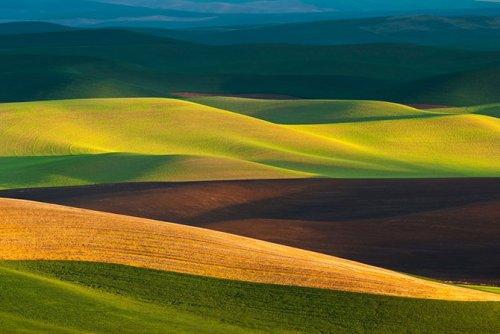 Абстрактная природа в фотографиях Торстена Шойермана (13 фото)