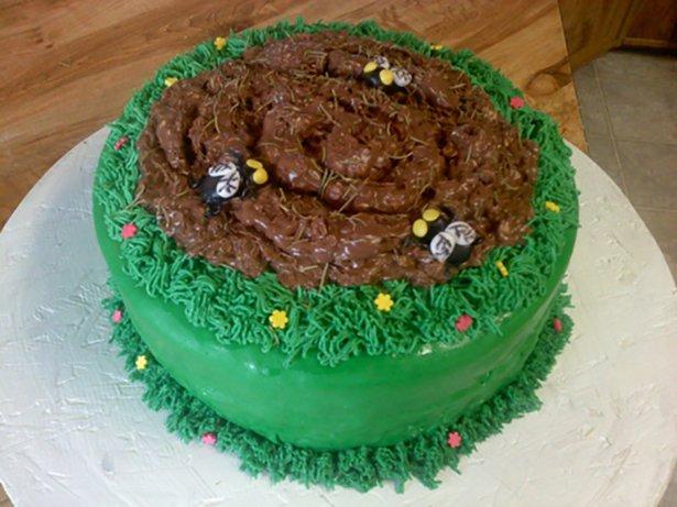 foto-torti