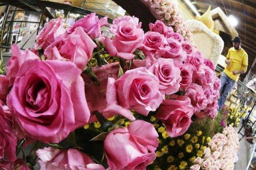 Парад роз в Пасадене (9 фото)
