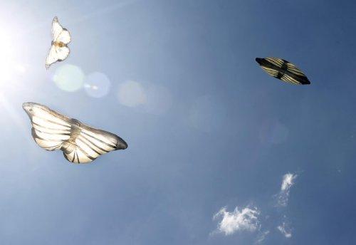 XIV-ый Солнечный фестиваль воздушных шаров в Колумбии (13 фото)