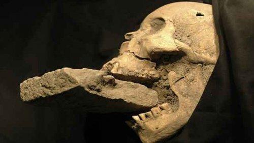 Топ-25: Самые значительные археологические открытия в истории человечества