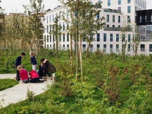 Зелёная школа в самом сердце Парижа (9 фото)