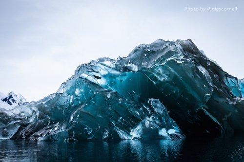 Уникальные кадры: как выглядит перевернувшийся айсберг (6 фото)
