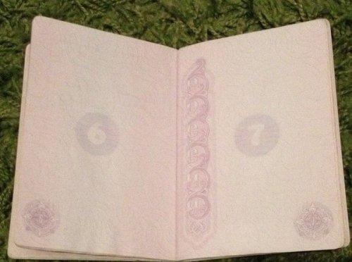Новый российский паспорт в ультрафиолете (7 фото)