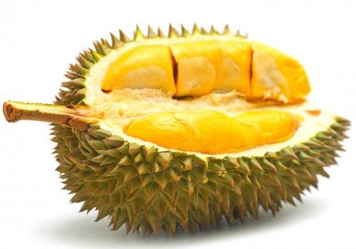 Самые отвратительные и опасные виды уличной еды