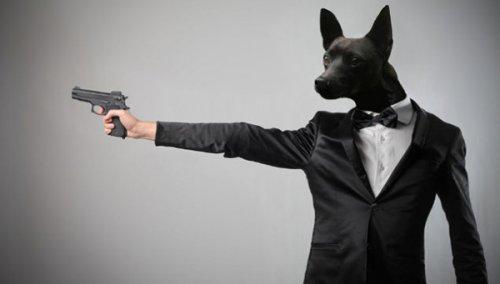 Глупые несчастные случаи, произошедшие с применением огнестрельного оружия (9 фото)