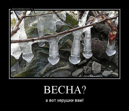 Весёлый сборник демотиваторов (17 шт)
