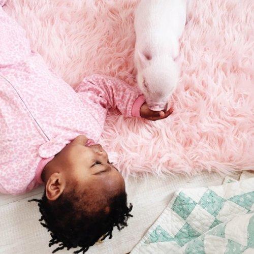 Трогательная дружба 2-летней девочки и 3-месячного поросёнка (18 фото)
