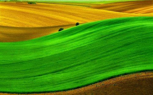Фотографии с впечатляющей цветовой палитрой (19 фото)