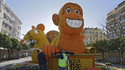 Во Франции открылся 82-ой Фестиваль лимонов (15 фото)