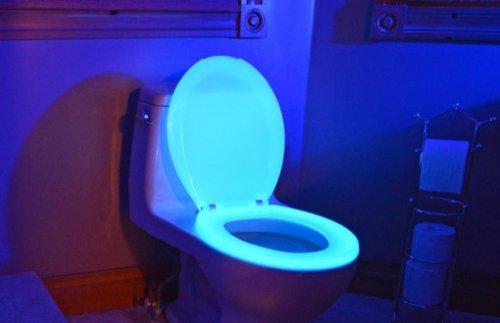 Необычные сиденья для унитазов (10 фото)