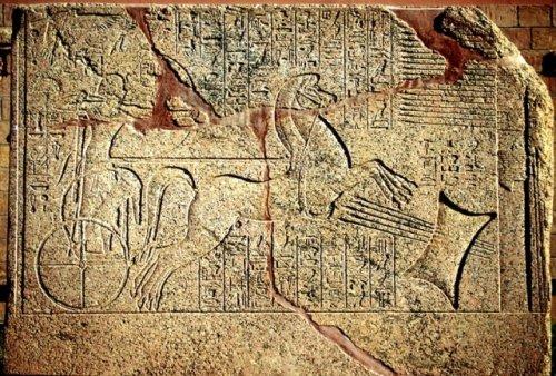 Топ-10: Самые интересные факты о стрельбе из лука за всю историю человечества