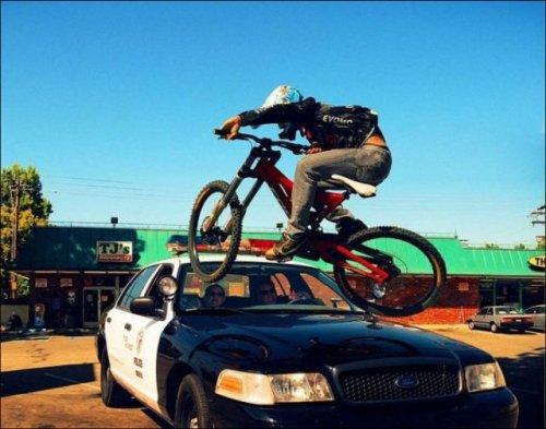 Приключения велосипедиста, решившего проехать по полицейской машине (13 фото)