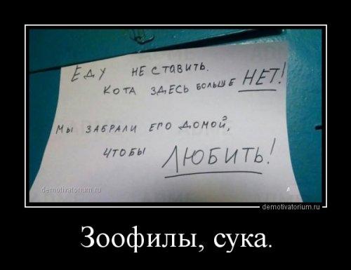 ���������� ������������ (13 ��)