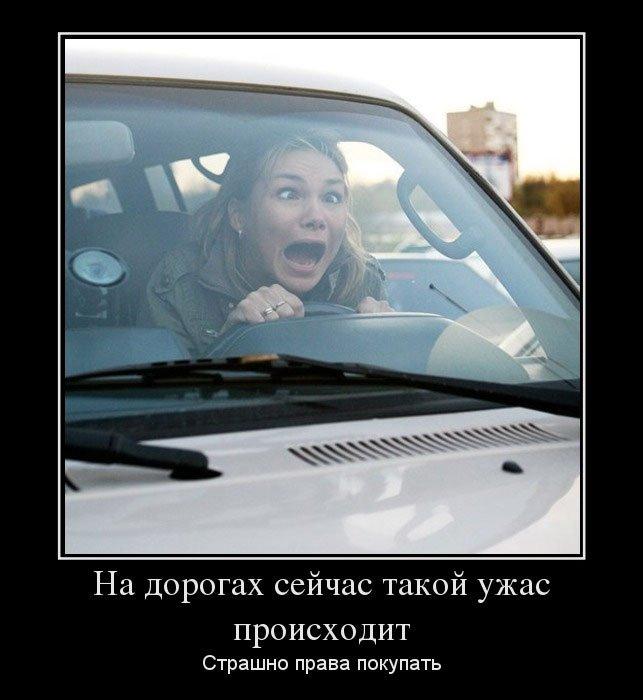 с днем автомобилиста демотиватор говорят денежных