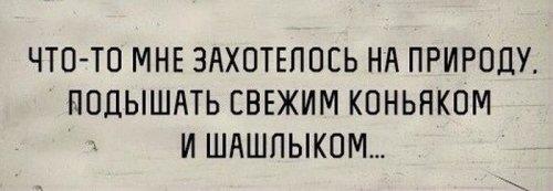 Приколов пост (39 шт)