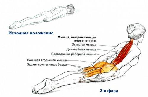 Упражнение для ровной осанки