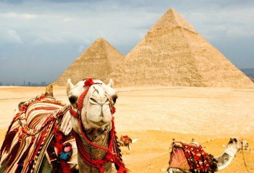 Топ-10: Самые экстремальные примеры «развода» туристов в мире