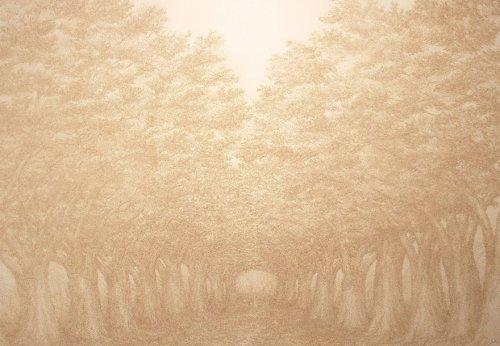 Художник рисует картины, выжигая их ароматическими палочками (11 фото)