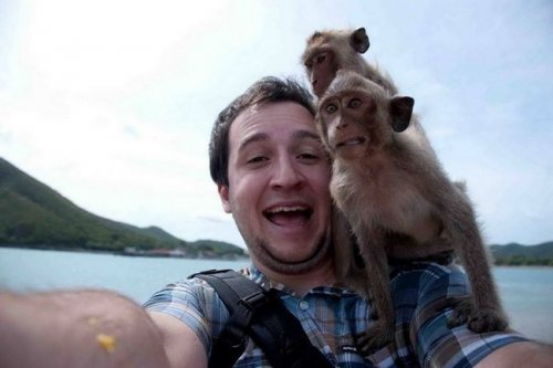 Селфи с животными (24 фото)